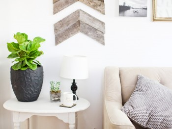 Fiddle Leaf Fig Decor Inspo