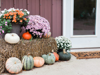 Around the Home: Autumn Accents