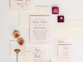 Beautiful Wedding Invitations, Announcements, and Websites with Basic Invite