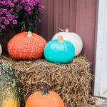 The Teal Pumpkin + Allergy Friendly Treat Ideas
